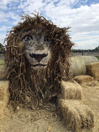 DPA Pumpkin Village lion