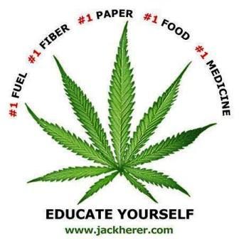 Clinton City Council to consider hemp resolution | hemp, agriculture, economic development, Ivan Potter, Clinton, Kentucky