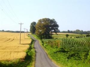 Farm subsidies proposal - cut three billion