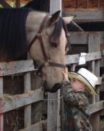 Patsy Brandt shares love of horses in photos