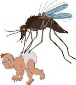 State fighting back against post flood mosquito invasion
