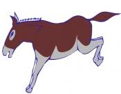 Of Donkeys, Jennys and Jacks