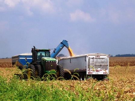 St. Louis Federal Reserve Report 5 Years of Depression for Region Farmers