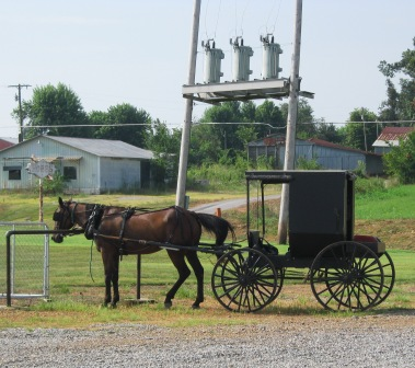 fancy farm amish
