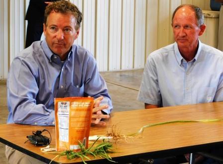 Hemp: the holy grail for West Kentucky farmers