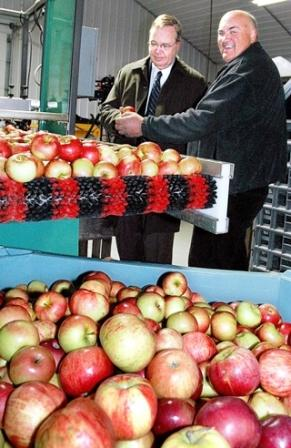 Left: Dallas Tonsaga, USDA and Dave Pagoria, orchard owner