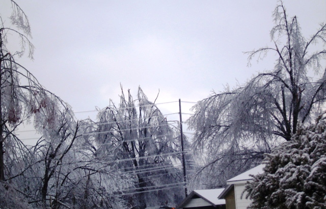 2009 Ice Storm Day One: Isn't It Pretty?